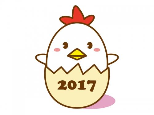 2017年の総括を定義する